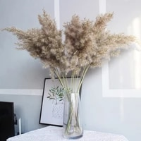 50pcs natural dried small pampas grass phragmites artificial flowers plants party christmas home decoration accessories