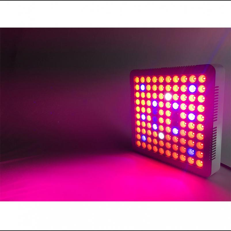 300W LED Growth Lamp For Plants Led Grow Light Full Spectrum Phyto Lamp Fitolampy Indoor Herbs Light For Greenhouse Led Grow fast grow indoor led grow light full spectrum 300w phyto growth lamp indoor phytolamp for plants flower veg greenhouse grow tent