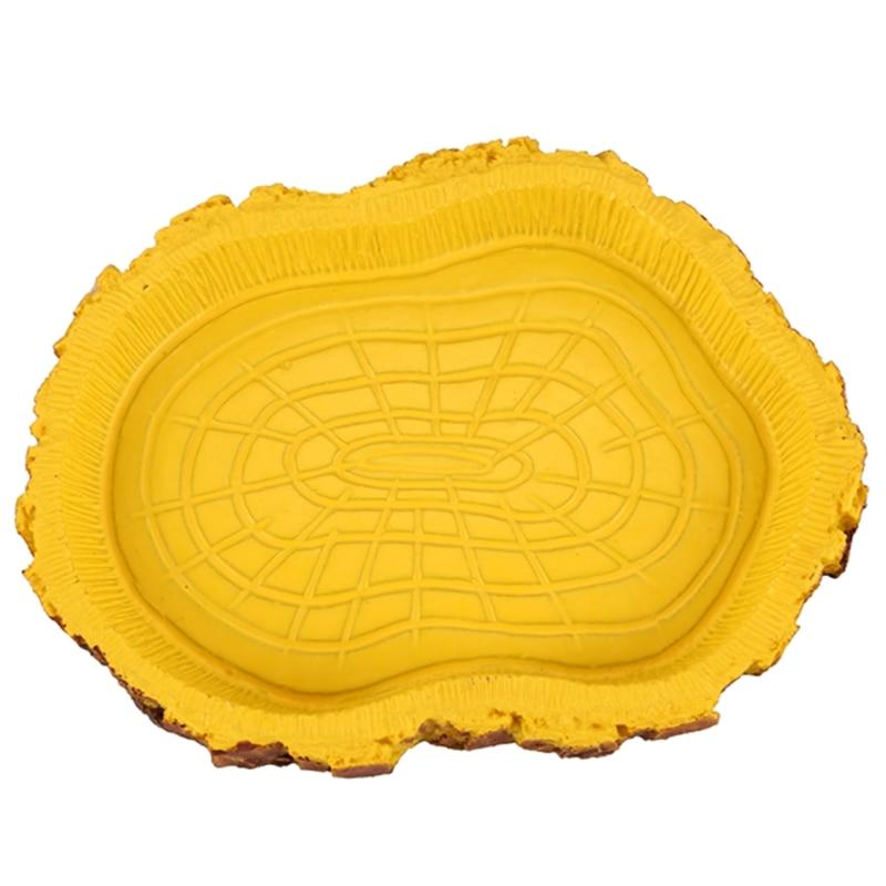 FashionWater plato comida bandeja Bol piscina para anfibios reptiles tortuga serpiente lagarto Zoo tipo Tipo 4