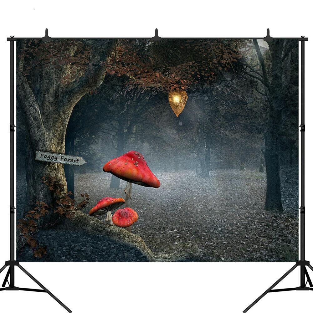 Fondo de fotografía de bosque brumoso estudio fotográfico fondo de foto de setas de hadas