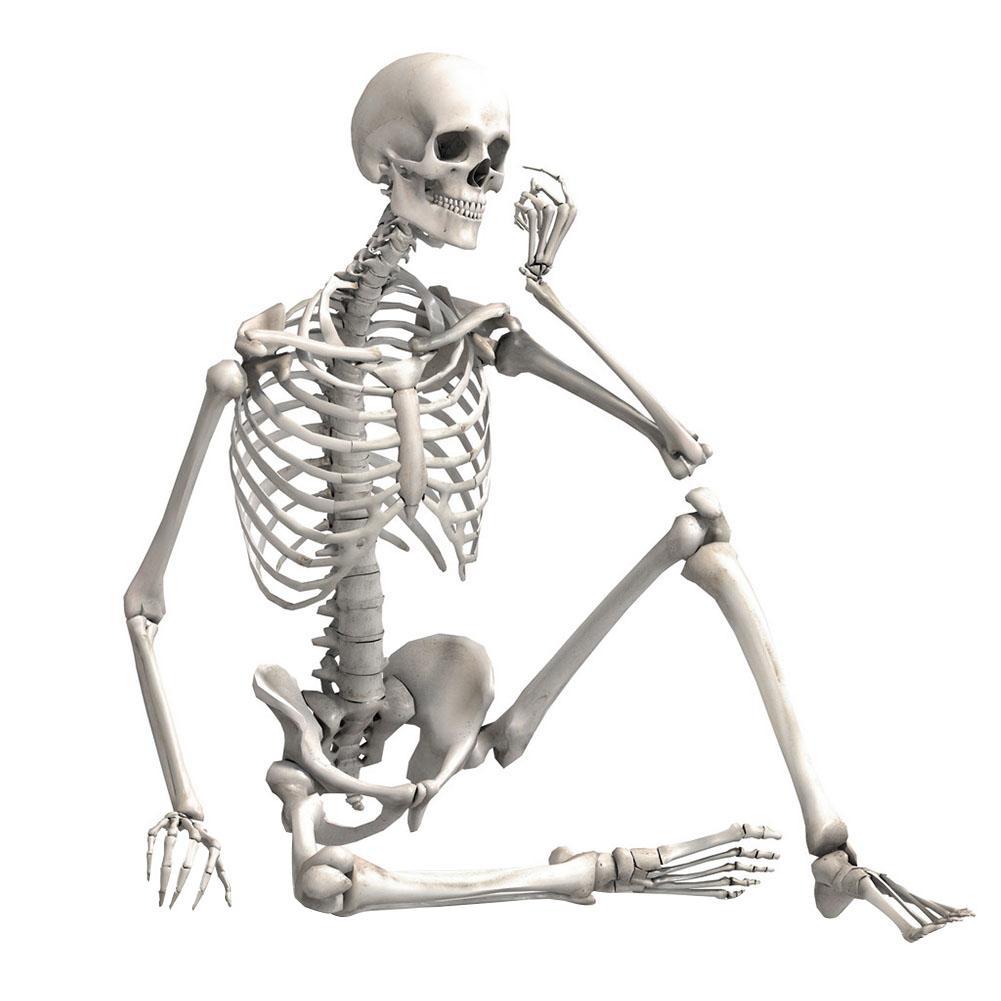 90cm simulación esqueleto humano adorno fiesta de Halloween Bar casa embrujada utilería