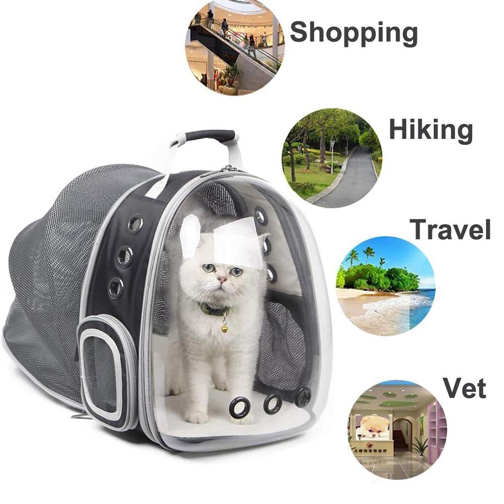 حقيبة ظهر محمولة قابلة للتوسيع للقطط والجرو ، للسفر في الهواء الطلق ، حقيبة نقل للقطط ، مستلزمات الحيوانات الأليفة