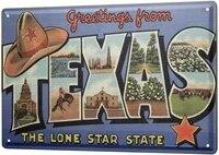 since 2004 tin shield adventurer texas star