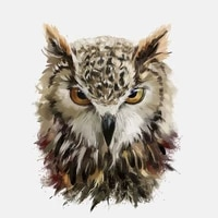car sticker funny sharp eyes of the owl high quality automobiles motorcycles exterior accessories pvc decal16cm12 8cm