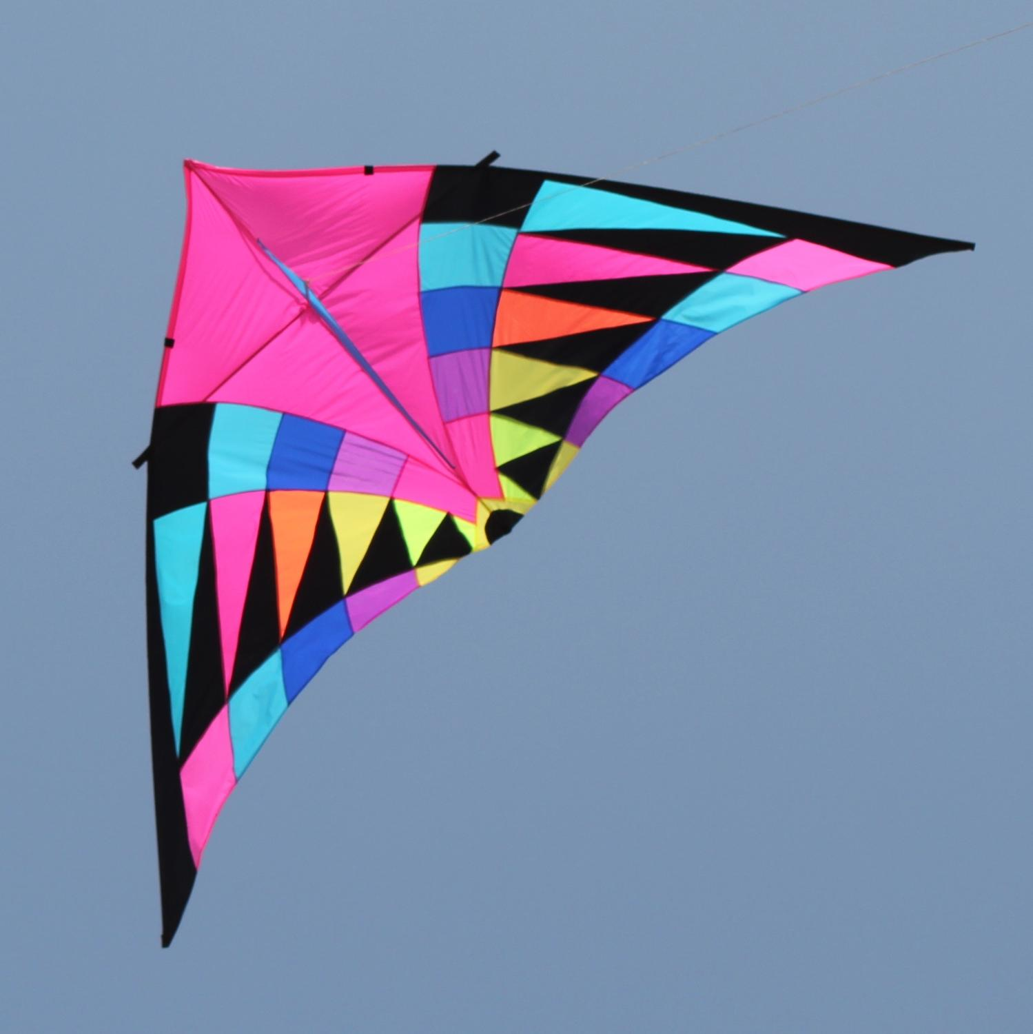 free shipping large rainbow kite windsock delta handle line ripstop nylon fabric kite factory surf eagle kite flying octopus toy недорого