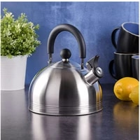 2 3l stainless steel whistling tea kettle large capacity thickening tea pot