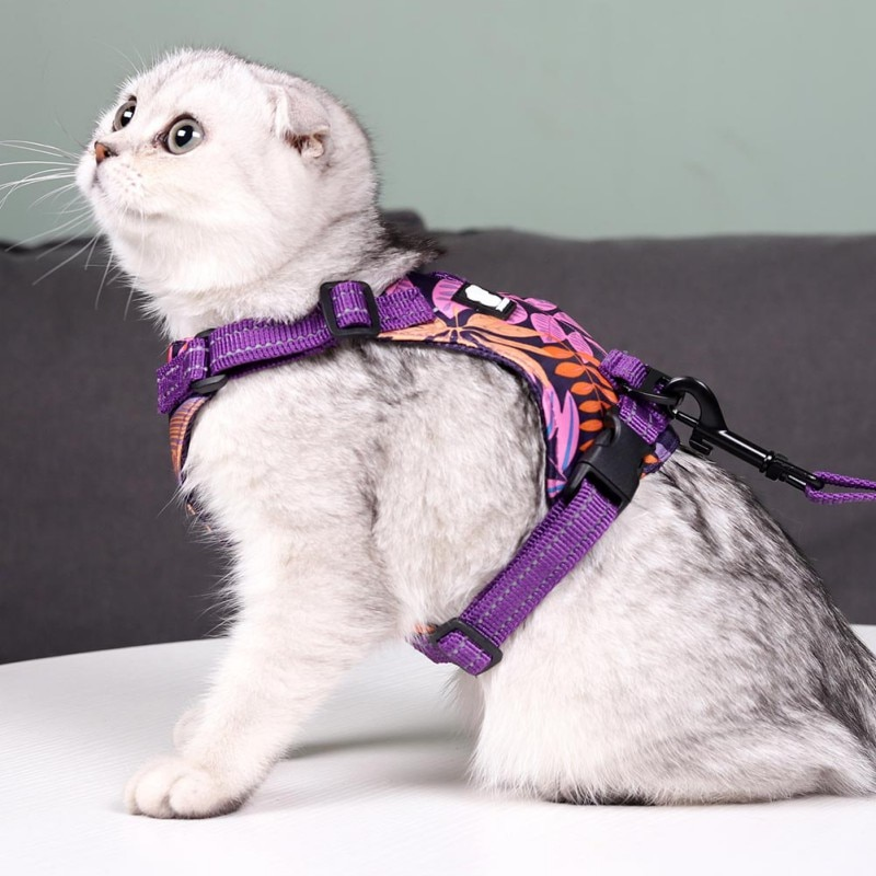 New Reflective Cat Sling Traction Rope Anti Breakaway Pet Leads Hawaiian Wind Cat Rope Traction Chest Strap