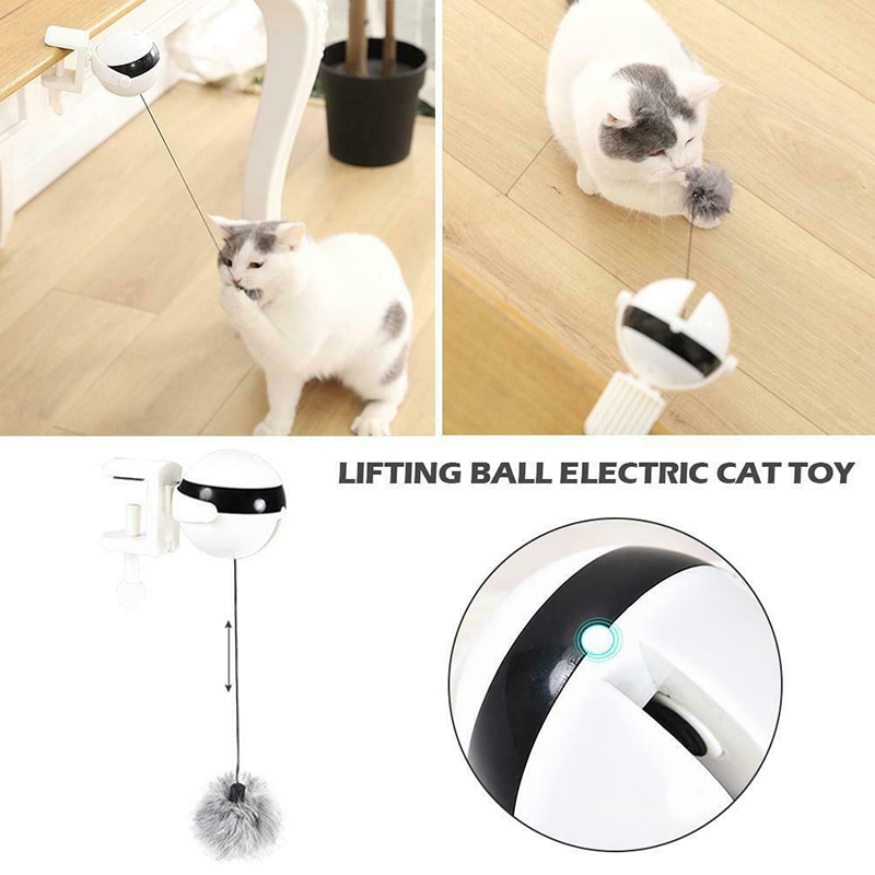 Juguete de gato auto-juguete gato Teaser elevación automática bola eléctrica con bola esponjosa WXV venta