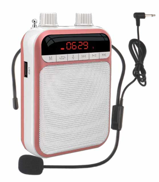 Altavoz Bluetooth con Eco, micrófono, amplificador de voz, amplificador de voz, altavoz megáfono para enseñanza, guía turística, promoción de ventas