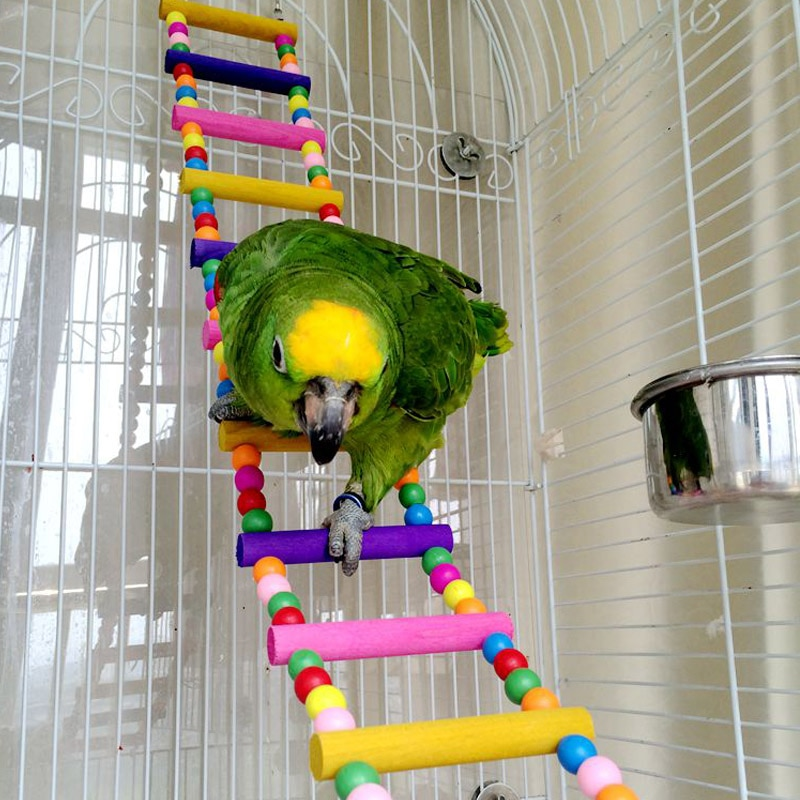 Birds Pets Bird Supplies Hanging Colorful Balls Climbing Toy 1 Pcs Parrots Ladders With Natural Wood
