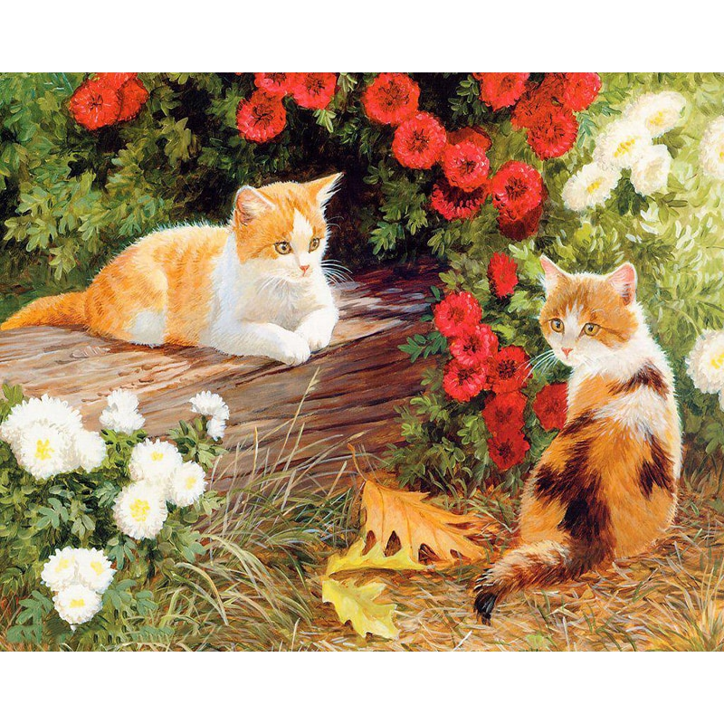Pintura gatyztory por números para adultos niños gatos cuadro DIY pintura al óleo pintada a mano decoración del hogar regalo único