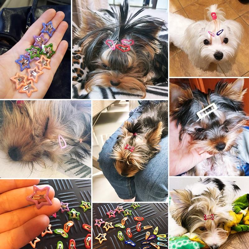 Pawstrip 10vnt / lot start šunų plaukų segtukas apie 2 cm mažiems - Naminių gyvūnėlių produktai - Nuotrauka 6