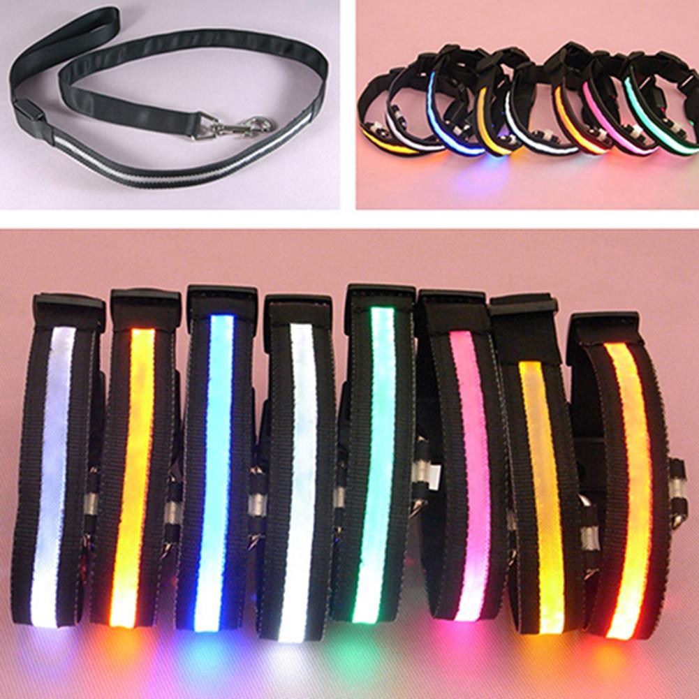 Collar de nailon para perro mascota, Collar que brilla en la oscuridad, luz LED suave, correa ajustable para el cuello, arneses para mascotas, suministros para perros fáciles de llevar