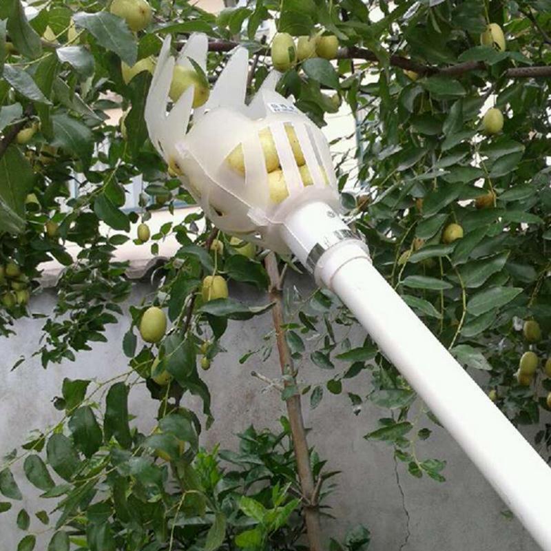 1pc Onvenient Obst Picker Gartenarbeit Frchte Sammlung Picking Kopf Werkzeug Obst Catcher Gert Gewchshaus Garten Werkzeuge Drop