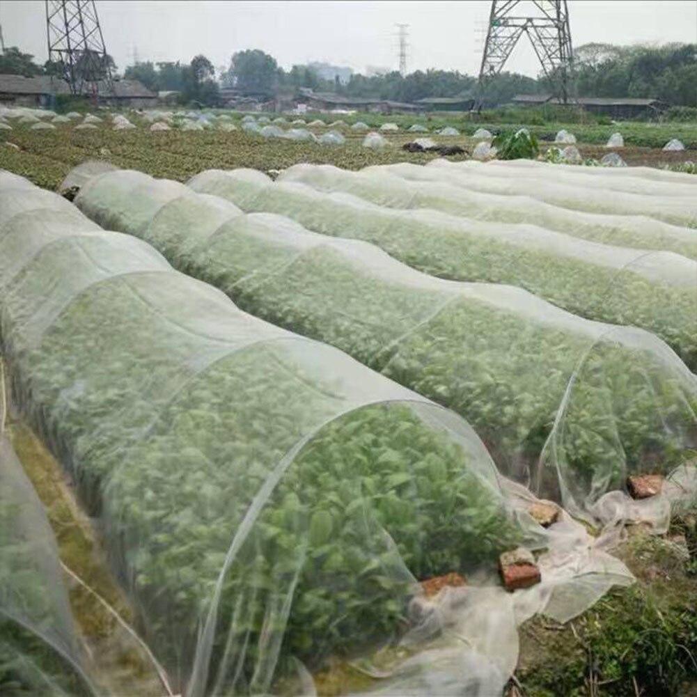 Red de protección de plantas de cultivo de jardín red para pájaros, plagas, insectos, animales, cuidado vegetal, redes grandes de malla 6x2,5 m, 10x2,5 m, 15x2m, 2x30m