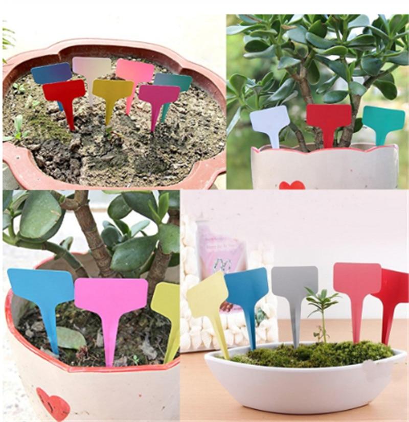 20 pces 6x10cm branco plástico pvc planta t-tipo tags marcadores berçário jardim etiquetas berçário vasos jardim decoração plântula bandeja