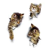 Autocollant mural en forme de chaton  Animal de dessin anime  chat  mignon  3D vif  decor de salle de bain pour bebe  autocollant de toilette pele et baton