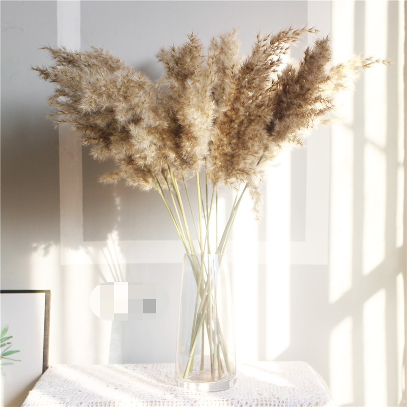 Dried Flower Reed Wheat Ear Artificial Plant Grass Reed Fake Flower For Home Wedding Decor Good Quality Dropshipping