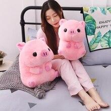 Assis rose cochon chanceux cochon peluche Animal poupée mignon peluche enfants amoureux saint valentin cadeau 40cm