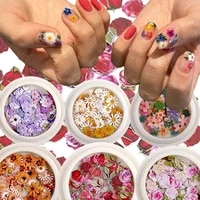 nail art color mixed flower wood pulp piece small daisy rose fresh pastoral nail dried flower patch diy nail art decoration