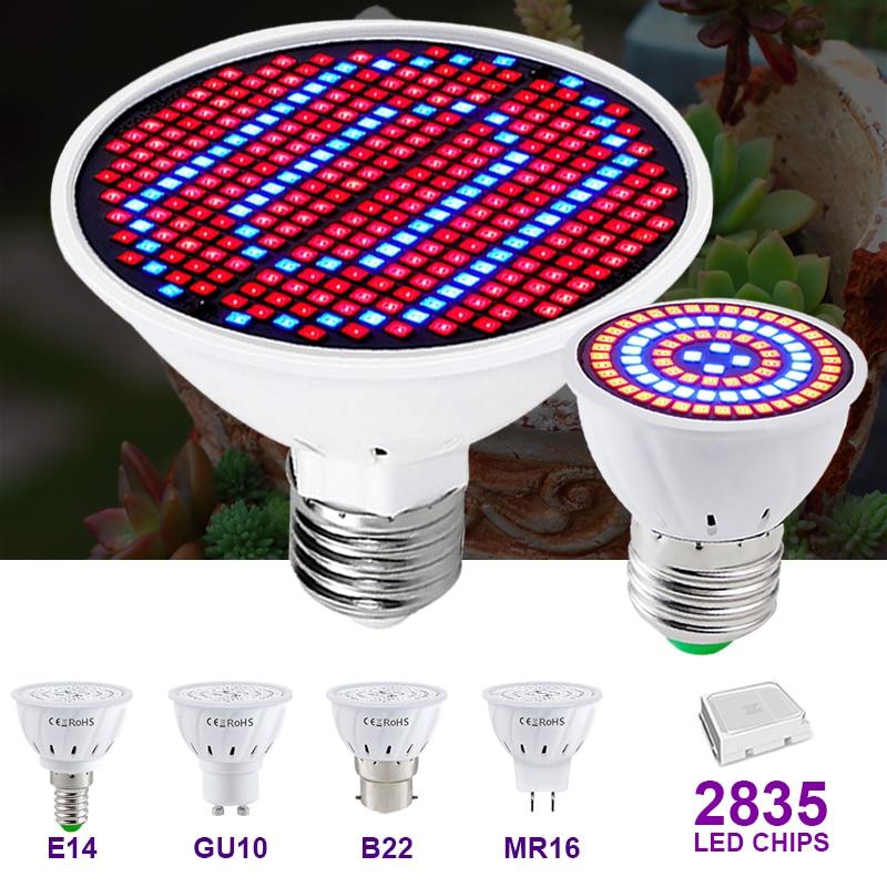 Grow Lamp E27 E14 Indoor Lighting Hydroponic Growth Light 220V Full Spectrum Led Plant Tent