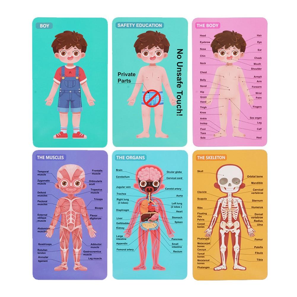 quebra cabecas infantil de madeira 1 conjunto para meninos e meninas brinquedo educacional