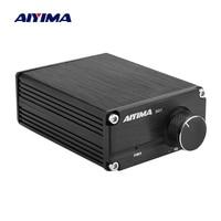 AIYIMA TPA3116 Subwoofer Amplifier Power Audio Board 100W TPA3116D2 Mono Digital Sound Amplifiers NE5532 OP AMP Home Theater DIY