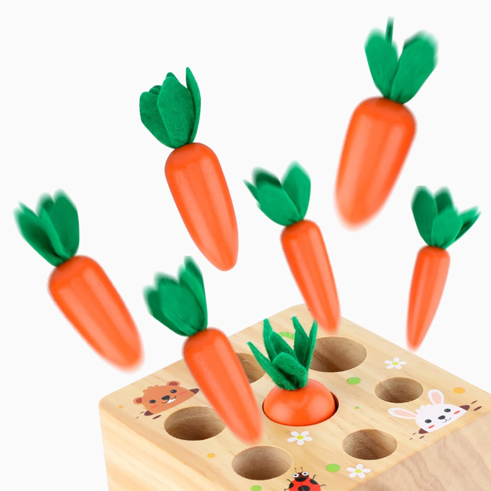 Tirer carotte jouet bébé Montessori ensemble de blocs en bois forme correspondant taille capacité formation Montessori jouet éducatif cadeau infantile