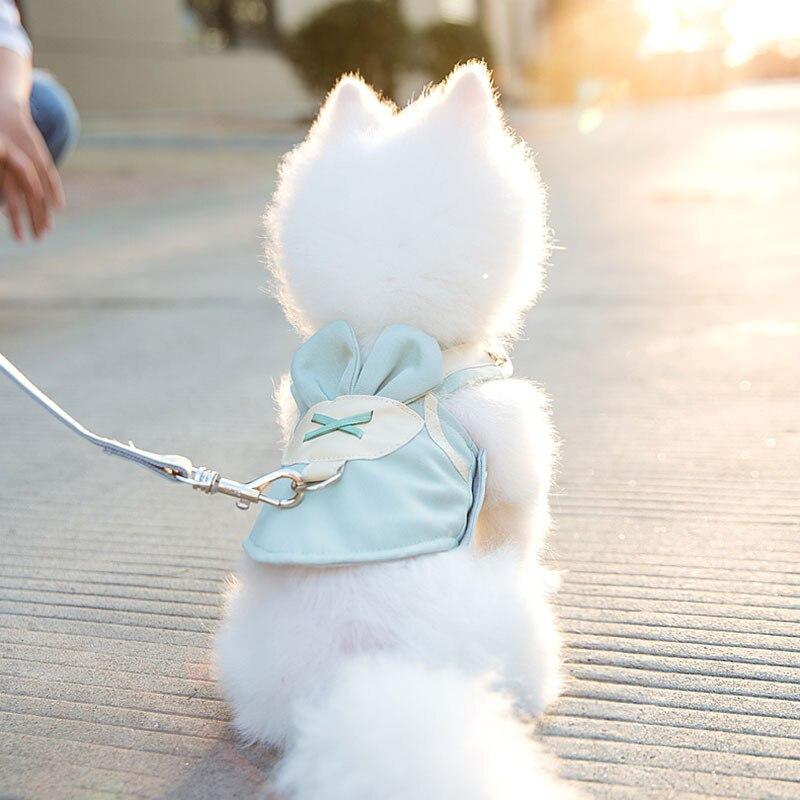 Conjunto de arnés para perro o gato transpirable, arnés de perrito de malla suave para mascotas y chaleco de correa para gatos para perros pequeños que caminan, correa de pecho para mascotas