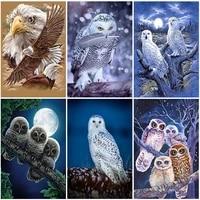 diy owl 5d diamond painting full square drill birds diamond embroidery cross stitch mosaic animal resin wall art home decor gift