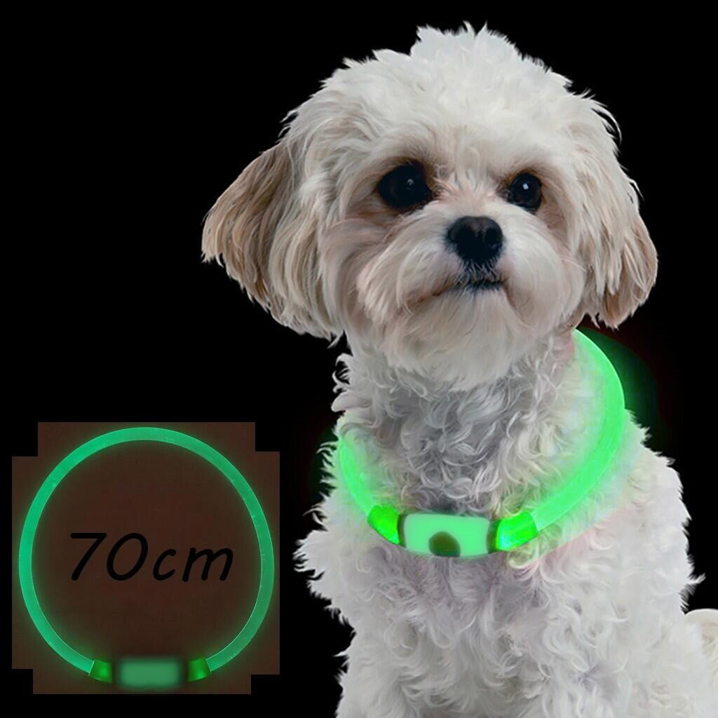 Multifunctional Led Dog Collar Tpu Can Cut Usb Rechargeable Lighting Collar Puppies Dog Collars Leads Led Supplies Pet Products