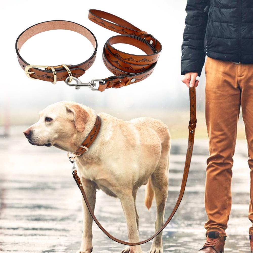 Ошейник и поводок из натуральной кожи для собак, набор, прочный ошейник для прогулок для домашних животных, поводок для средних и больших со...