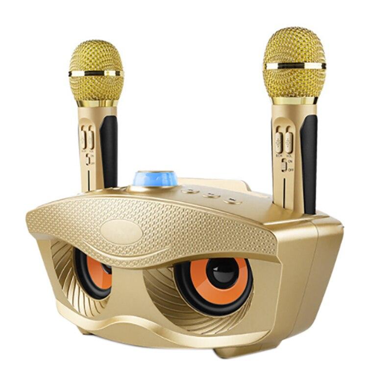 SD306 سمّاعات بلوتوث مزدوجة مع 2 ميكروفونات لاسلكية في الهواء الطلق الأسرة KTV ستيريو ميكروفون صوت كبير 20 واط