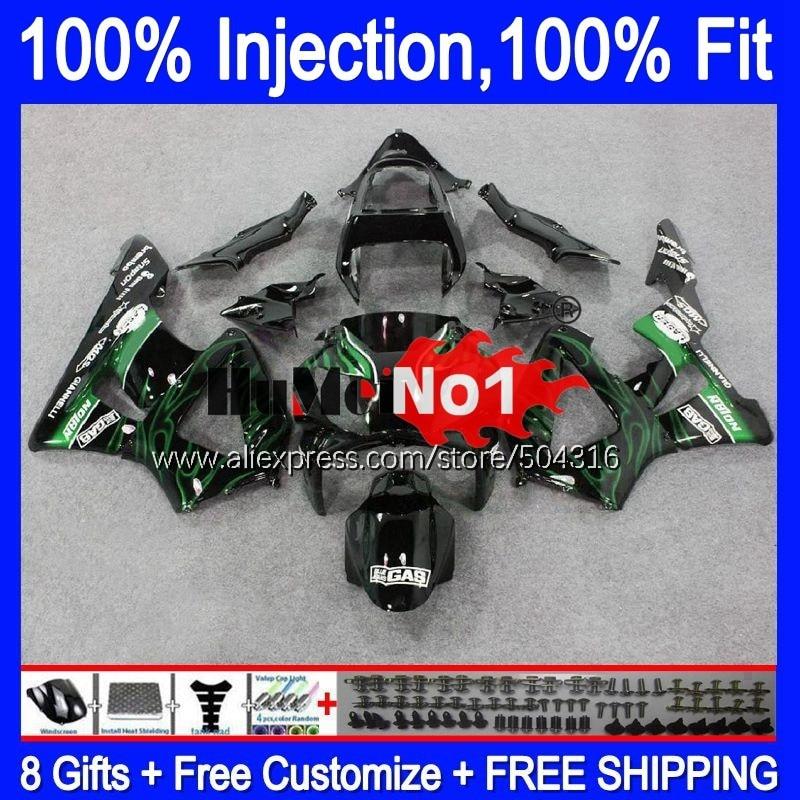 OEM لهوندا CBR900 RR CBR 929RR 929 900 RR 900RR 00MC.97 CBR929RR CBR900RR CBR929 RR 2000 2001 00 01 Fairings الأخضر اللهب