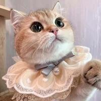 pet accessories saliva towel cat scarf lace pearl pendant dog collar collar adjustable