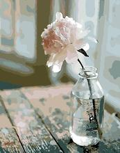 Одинокая роза Краска по номерам для комплекты для взрослых DIY окраска по номерам Цветок картина масляная краска ing по номерам peinture a numero