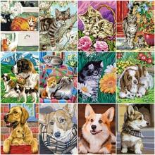 Huacan pintura por número gato animal desenho sobre tela pintados à mão arte presente diy colorir por número cão kits decoração de casa