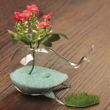 투명 유리 꽃병 귀여운 고래 장식품 패션 홈 공예 참신 아이디어 사무실 카페 장식 홈 가구