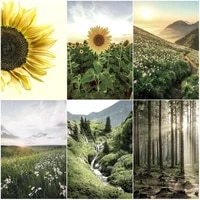 chenistory painting by number sunflower drawing on canvas handpainted painting art gift diy pictures by number landscape kits ho