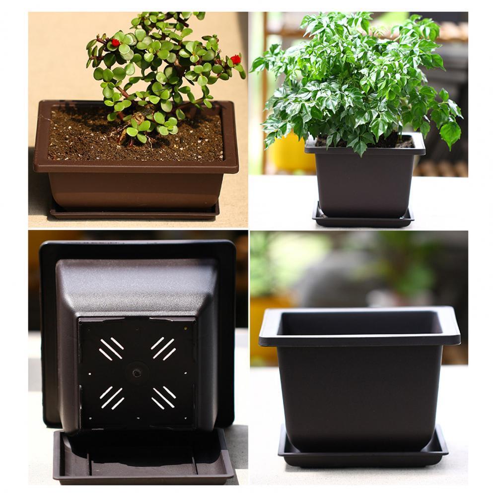 Succulent Flower Pot Square Rectangular Plastic Bonsai Flowerpot Garden Tool    Garden Tool     Flower Pot     Plastic Bonsai Fl