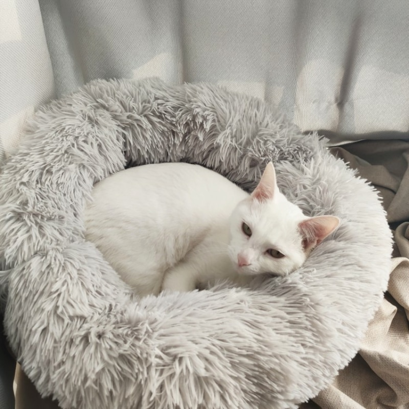 Cama redonda de felpa de 6 tamaños para gatos, cama para gatos, esterilla para gatos de invierno cálida, cesta suave para perros, cojín para mascotas, suministros portátiles para mascotas