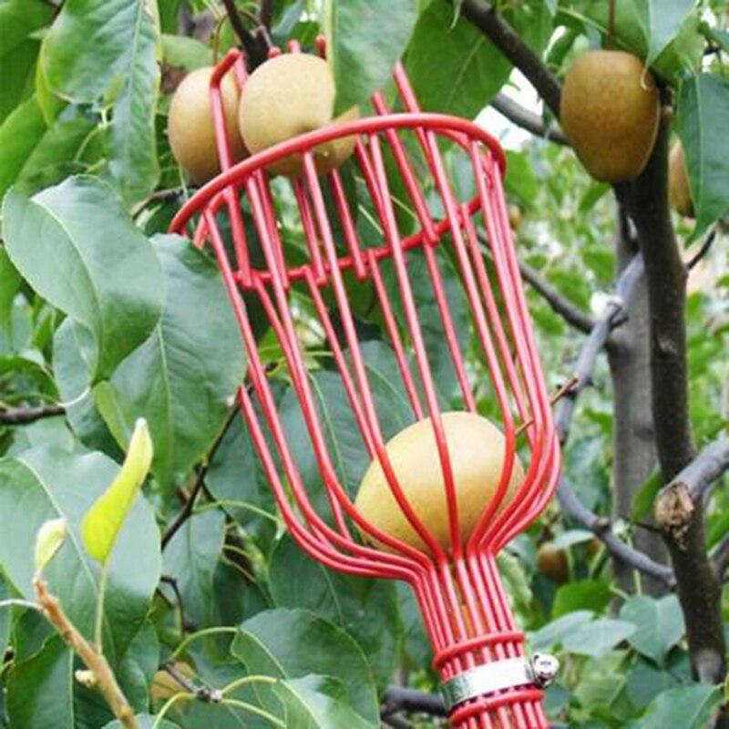 Herramientas de jardín Deep Basket recolector de frutas cabeza conveniente recolector de frutas receptor Apple Peach Picking Farm Garden Picking dispositivo