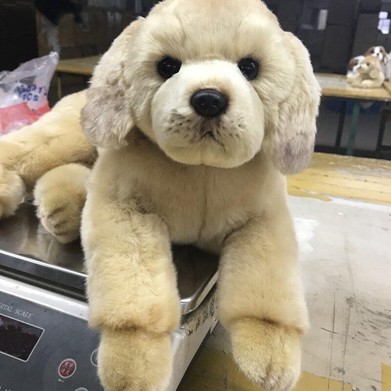 Dorimytrader qualidade simulação animal golden retriever cão brinquedo de pelúcia recheado macio presa cão animal estimação boneca 50x23cm