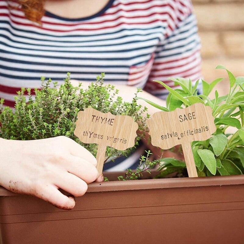 10 значений для растений, этикетки для бамбуковых растений, деревянные Т-образные наклейки на колышки растений, знаки для розеток растений д...