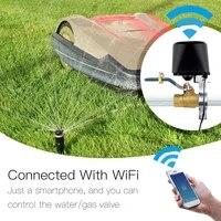 Controle sans fil gaz eau vanne vie intelligente WiFi capteur liaison arret controleur Compatible pour Alexa Google Home