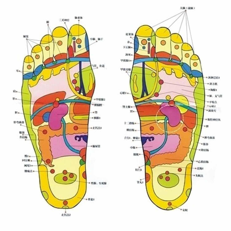 Купить с кэшбэком 10pcs/box Detox Foot Pads Patches with Retail Box and Adhesive Detox Foot Pads(10pcs Pads and Adhesive) foot Cleansing massager