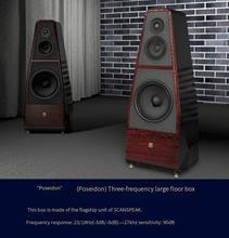 DS 313BS HiFi hi-end speaker scanspeak di punta a tre vie 13 pollici bassi 6.5 pollici Bliesma T34B berillio pellicola tweeter altoparlante