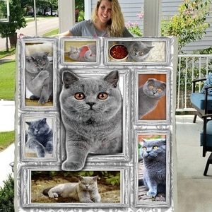 Pet Cat Kitty 3D Lovely Animal Pattern Premium Sherpa Fleece Blanket