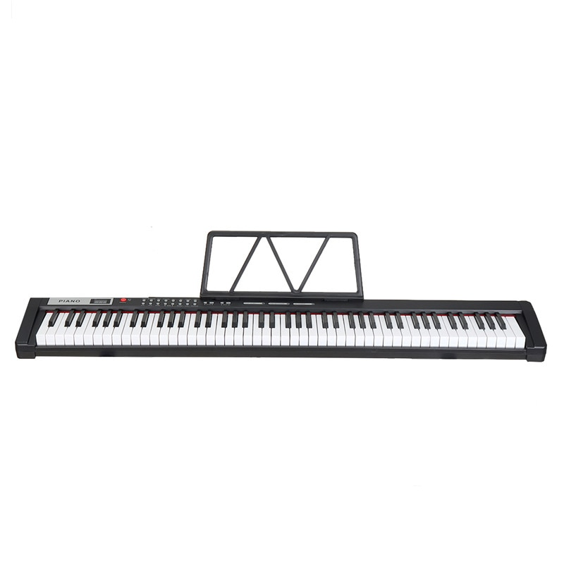 88Key Portable Digital Piano Standard Velocity Keyboard Professional Edition Electronic Piano Musical Gift Birthday Beginner 4KG enlarge
