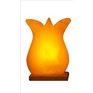 Tuz Lamba Lale Biblo LED Doğal Aydınlatma